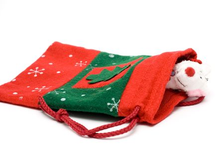 teddy bear in the christmas sock isolated on white photo