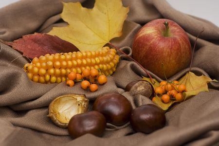 conker: arrangement made of leaves, chestnuts and corncob and apple Stock Photo