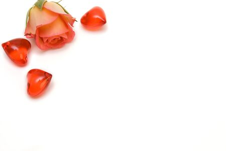 rose with red hearts isolated on white. space for text photo