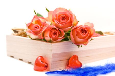 Roses isolated on white. space for text Stock Photo - 4139903