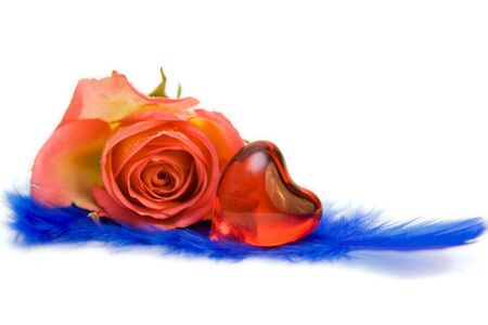 rose with red heart isolated on white. space for text photo