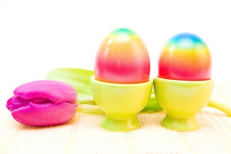 colorful easter egg and purple tulip isolated on white photo