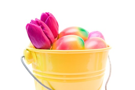 colorful easter eggs and purple tulips isolated on white Stock Photo