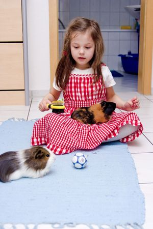 5 year old: little girl laying with two guinea pigs