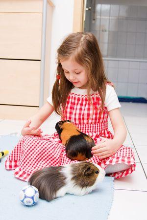 cavie: bambina, che con due porcellini d' Archivio Fotografico