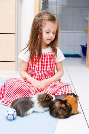 little girl laying with two guinea pigs photo