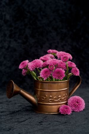 watering can with flowers against black background