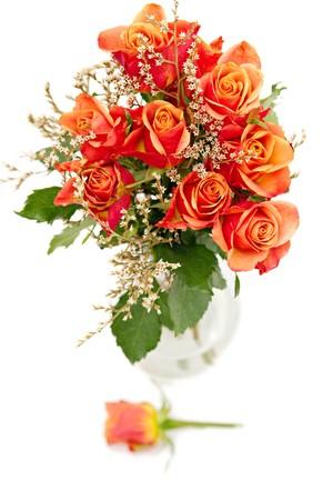 dozen: bunch of orange roses isolated on white Stock Photo