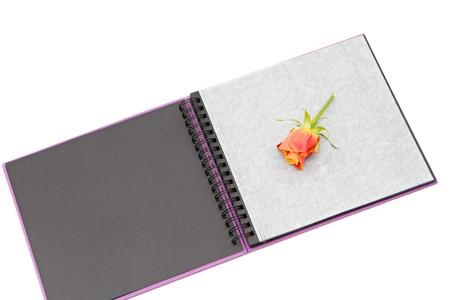 classic violet photo album isolated on white Stock Photo - 8008707