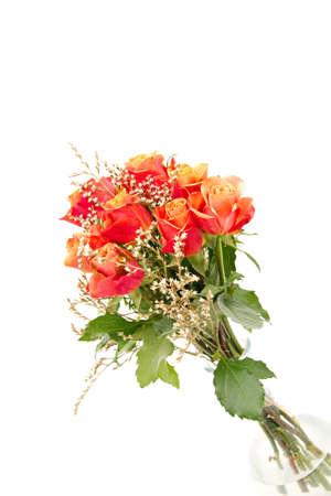 bunch of orange roses isolated on white photo