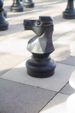 outwit: Black chess knight standing on the chessboard. Stock Photo