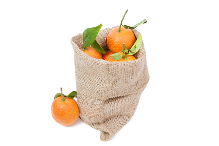 sackful: the mandarins in the sack isolated on white