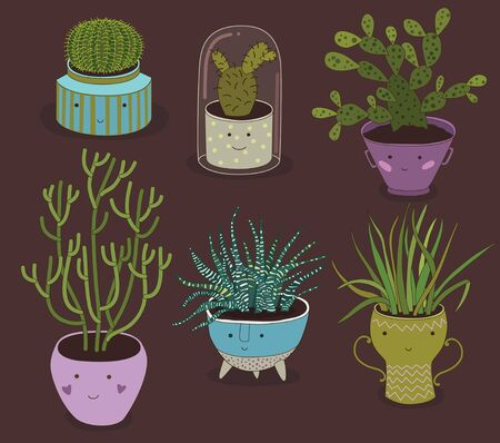 Vector set of various home plants in unusial pots.