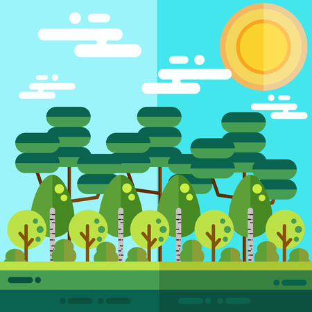 birch forest: Forest flat landscape with birch tree and other different trees.