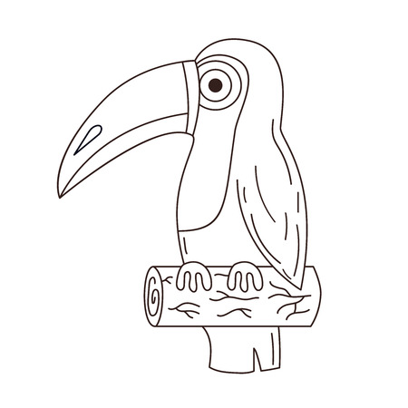 Toucan exotic bird black and white line vector illustration