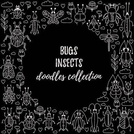 Bugs insects doodle line vector set Illustration