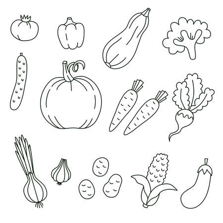 Vegetables doodle line icons vector set