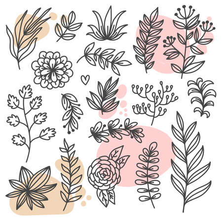 Botanical floral doodle design elements vector set
