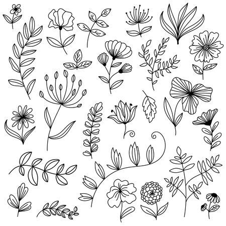 Big floral design elements doodle vector set 일러스트