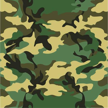 camoflage: Military pattern vector background