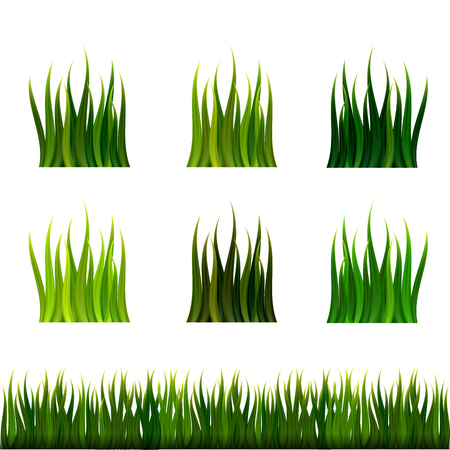 Green grass isolated vector set Çizim