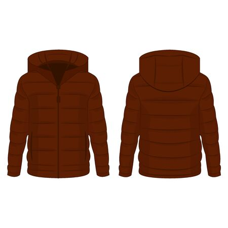 Brown winter down zipped jacket with hood isolated vector on the white background