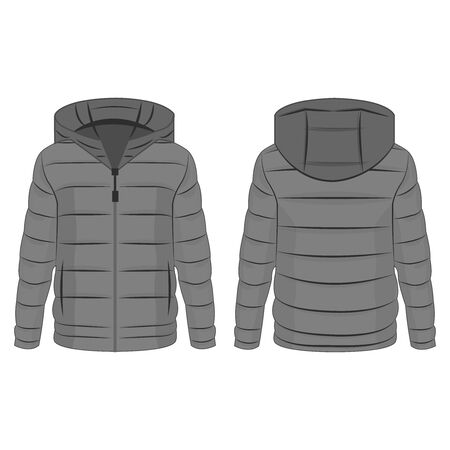 Grey winter down zipped jacket with hood isolated vector on the white background