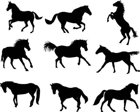 fer   � cheval: collection de chevaux   Illustration