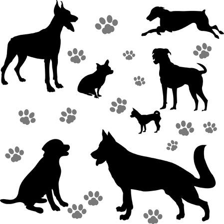 doberman: Hunde-Auflistung   Illustration