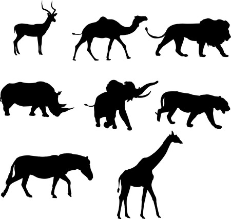 continente africano: silueta de animales africanos