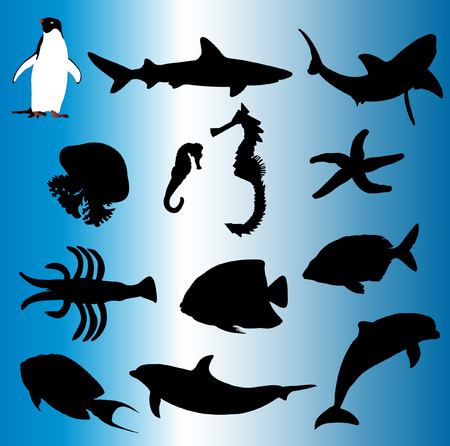 sea animal set - vector Vector