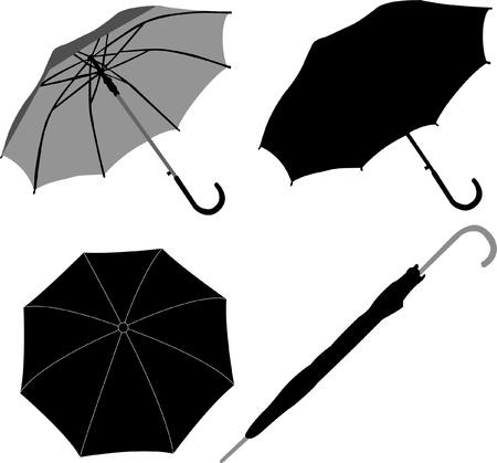 우산 수집