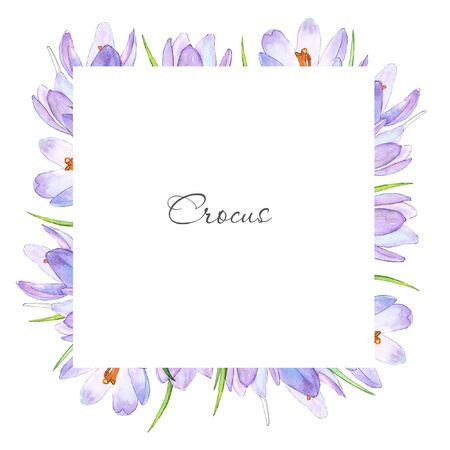 Watercolor purple crocuses frame on light backdrop.