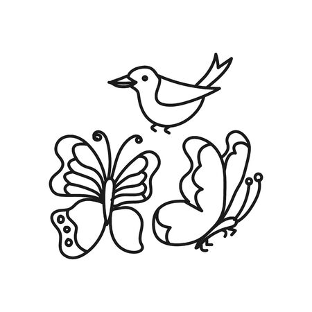 Set of vector butterfly and bird simple. Kids outline illustration on a white background.