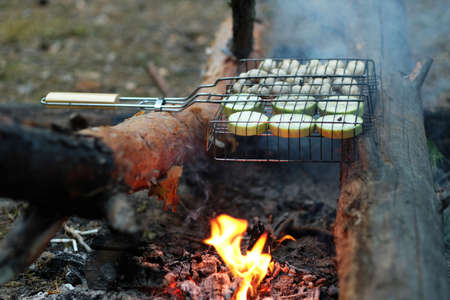 Vegetables are grilled in the forest. Delicious zucchini and mushrooms on the grill. Vegetarian dish on a campfire in the wild. Delicious zucchini and mushrooms on the grill. Banque d'images