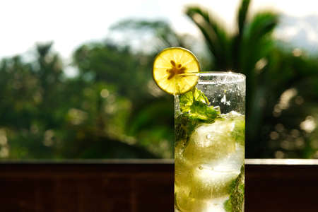 A glass of lemonade with a slice of lemon and mint leaves with ice on a background of palm leaves in a tropical atmosphere Banque d'images