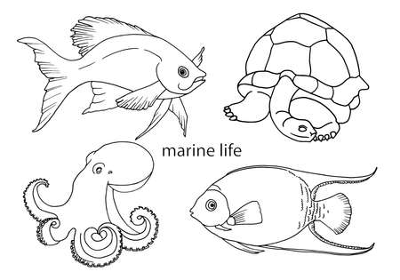 Hand-drawn outline of fish, turtles and octopus, drawing in the style of doodles. A set of vector illustrations of marine life for coloring, tattoos