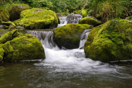 Cascading down a small mountain stream, the water runs over basalt boulders. A small waterfall runs through the moss. Banque d'images