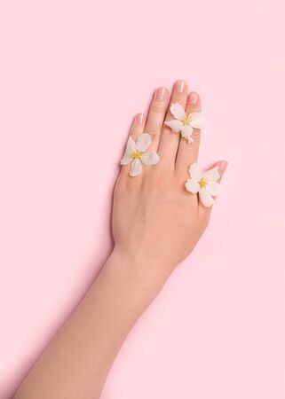 in the hands of a woman are young tender flowers. The concept of health, ecology, body care. View from above. Pink background