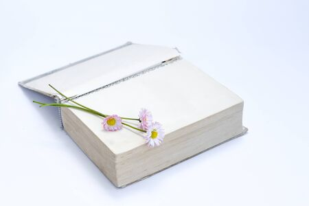 open old book. Bouquet of flowers from daisies. View from above. on white background. Place for text.
