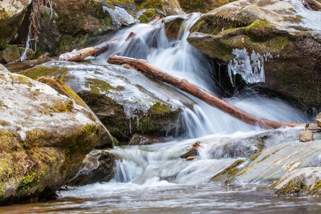 appalachian: Waterfall at National park with tree branches and leaves. Mountains of the Appalachian, Virginia.
