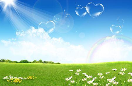 champ de fleurs: Champ vert avec des fleurs et ciel bleu