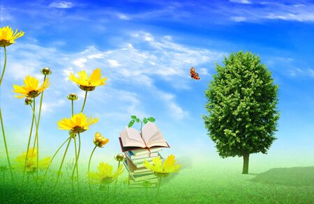 under a tree: books in the field under a tree Stock Photo