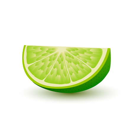Isolated realistic slice of juicy green color lime with shadow on white background. Illustration