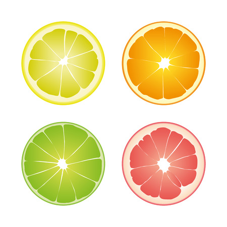 Set of four colored isolated slices of citrus: green color lime, yellow lemon, orange and pink grapefruit on white background.