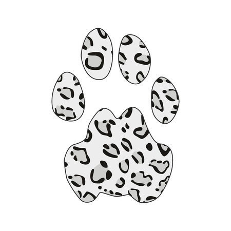 Isolated footprint of snow leopard irbis ounce with skin print on white background