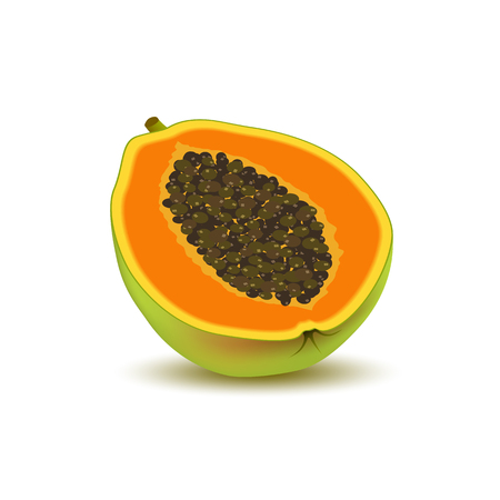 Isolated realistic colored half slice of juicy orange papaya, pawpaw, paw paw with seeds with shadow on white background Illustration