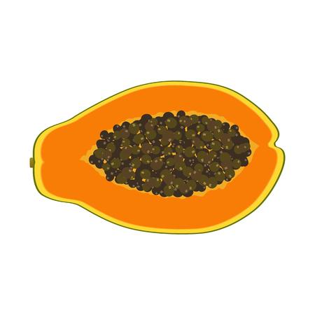 Isolated realistic colored slice of juicy orange papaya, pawpaw, paw paw with seeds on white background