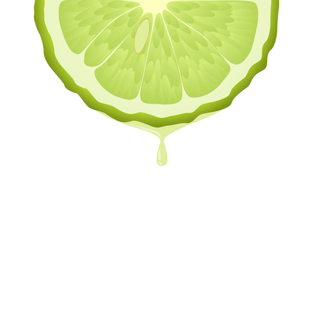 Isolated realistic colored half circle slice of green color juicy bergamot with drop of juice or oil on white background Illustration