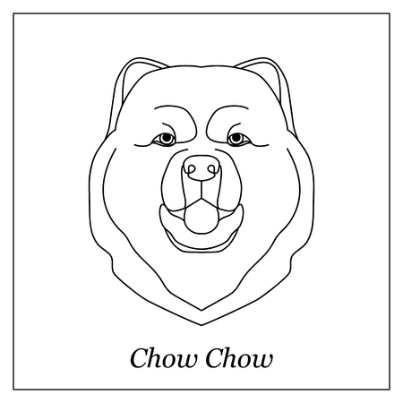 chow: Isolated black outline head of chow chow on white background. Line cartoon breed dog portrait Illustration